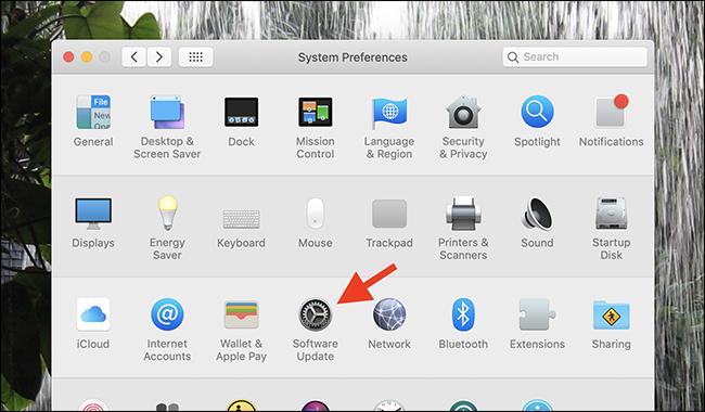 macOS Güncelleme İşlemleri App Store'dan Kaldırıldı