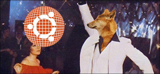 """Nisan 2019'da Çıkacak Olan Ubuntu 19.04'ün İsmi """"Disco Dingo"""""""