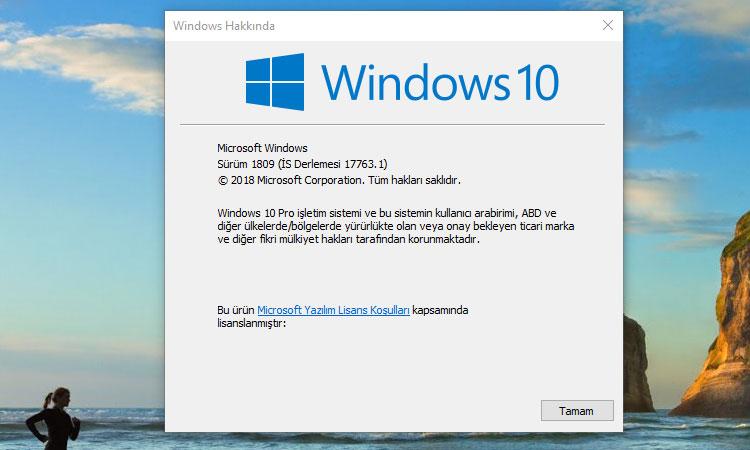 Windows 10 1809 Sürümünün Yüklü Olup Olmadığını Kontrol Etmek