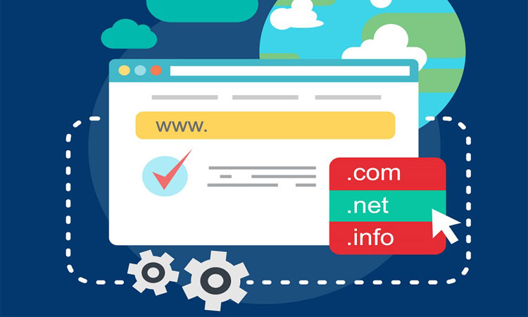 Domain mi Alacaksınız? İşte Bilmeniz Gerekenler