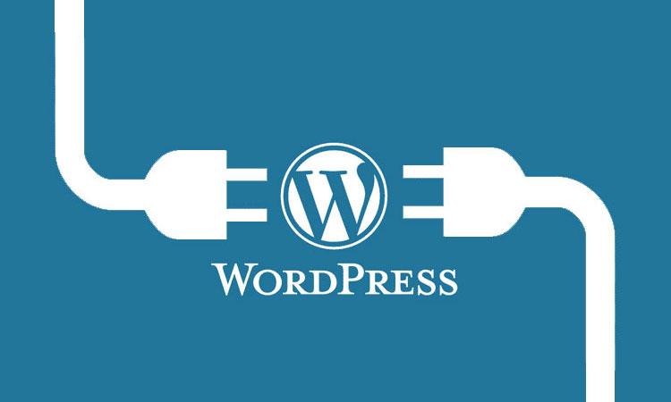Wordpress için Eklenti Nasıl Yüklenir?