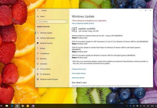 Windows 10 KB4480116 Güncellemesi Yayınlandı (Yapı 17763.253)