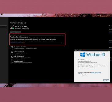 """Windows 10 1903 Sürümü """"İndir ve Şimdi Yükle"""" Seçeneğini Getiriyor"""