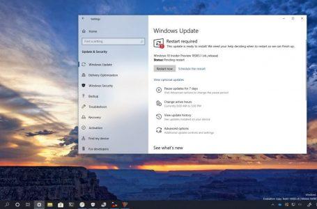 Windows 10 2004 Güncellemesi için 18985 Yayınlandı