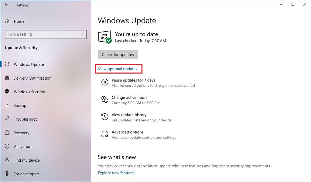 Windows 10 2009 İsteğe Bağlı Güncelleştirmeler