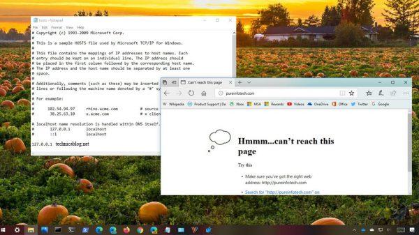 Windows 10'da hosts dosyası nerede ve nasıl düzenlenir?