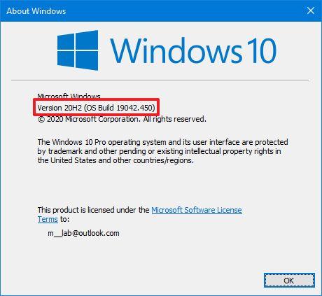 Windows 10 20H2 sürüm numarası